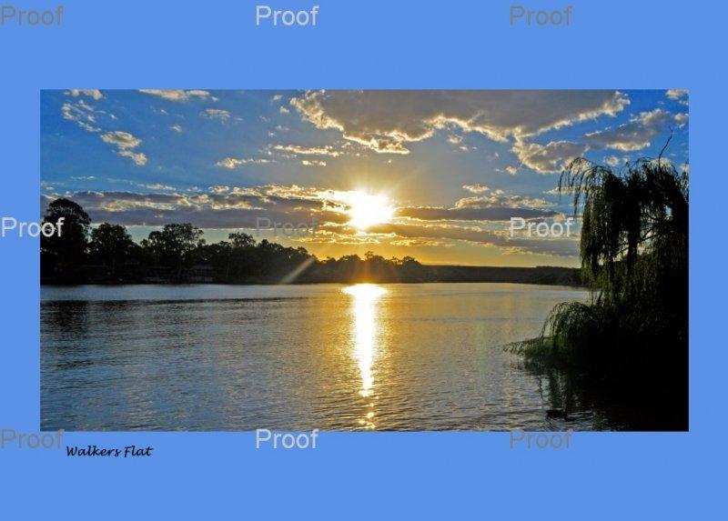Walker Flat, Murray Lands. Wetlands  South Australia