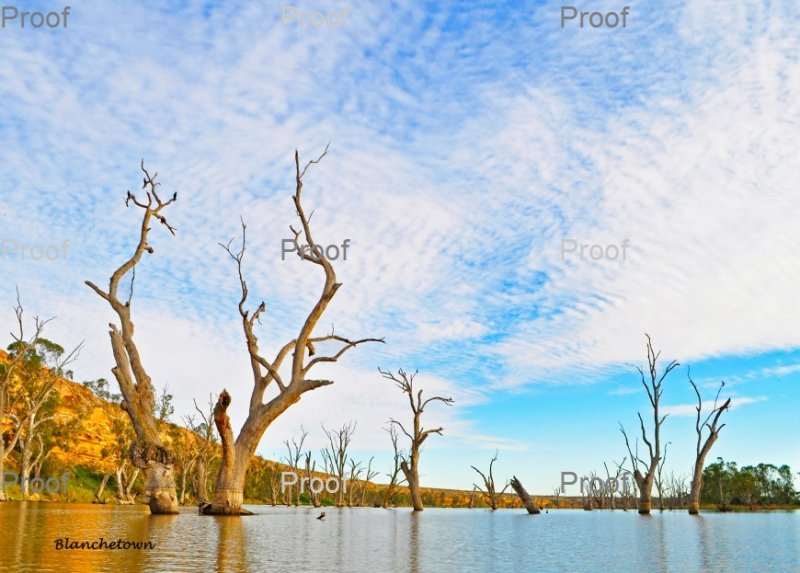 Blanchetown, limestone cliffs,The Riverland, South Australia
