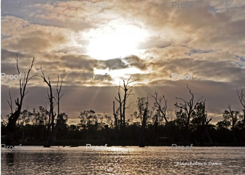 Sunrise Blanchetown wetlands, Riverland, The River Murray