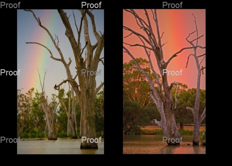 Rainbow Blanchetown Riverland South Australia