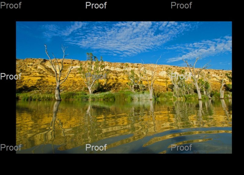 Blanchetown,limestone cliff, wetlands, River Murray, The Riverland South Australia