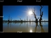 Blanchetown, wetlands, River Red Gums, River Murray, The Riverland South Australia.