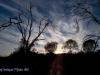 Dawn Waikerie clifftop walk. Riverland South Australia