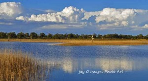 for info on Waikerie Wetland Walks: Hart & Ramco Lagoons, Riverland South Australia