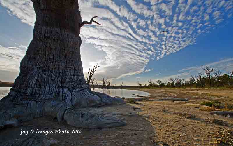 view more images Ramco Wetlands, Waikerie Riverland South Australia