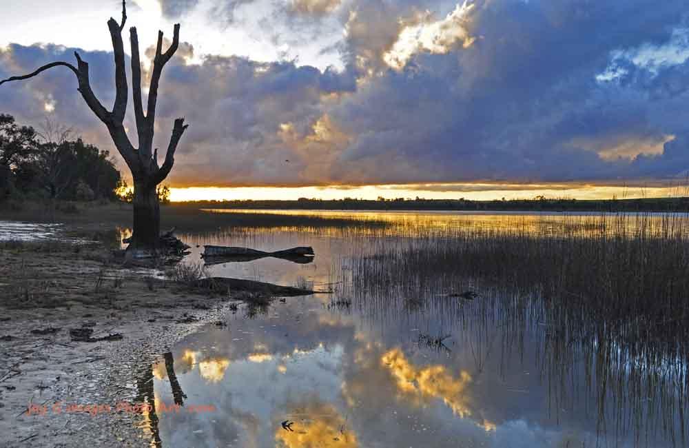 Hart lagoon Waikerie